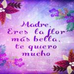 Frases Bonitas Para Una Madre Luchadora y Muy Querida
