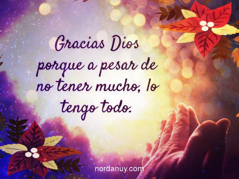 Frases De Agradecimiento Para Agradecer Y Dar Las Gracias