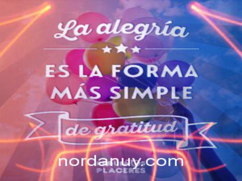 Frases De Alegría Para Sonreír Y Sentirte Bien Nordanuy